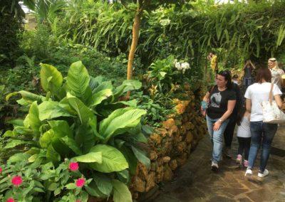 Oasi Rossi Garden Santorso